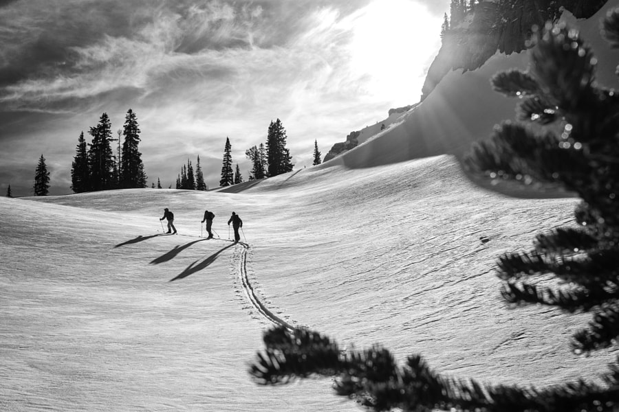 Backcountry Skiing - Jackson Hole, WY