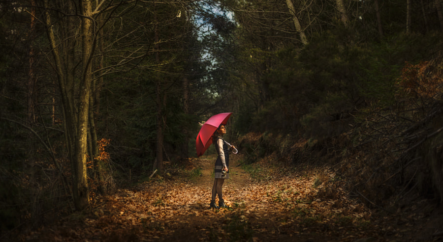 Photograph Come Rain or Shine by Pedro Quintela on 500px