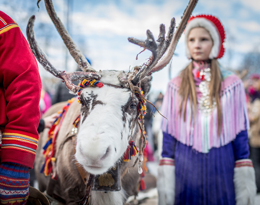Girl and her reindeer  by Malin Oqvist