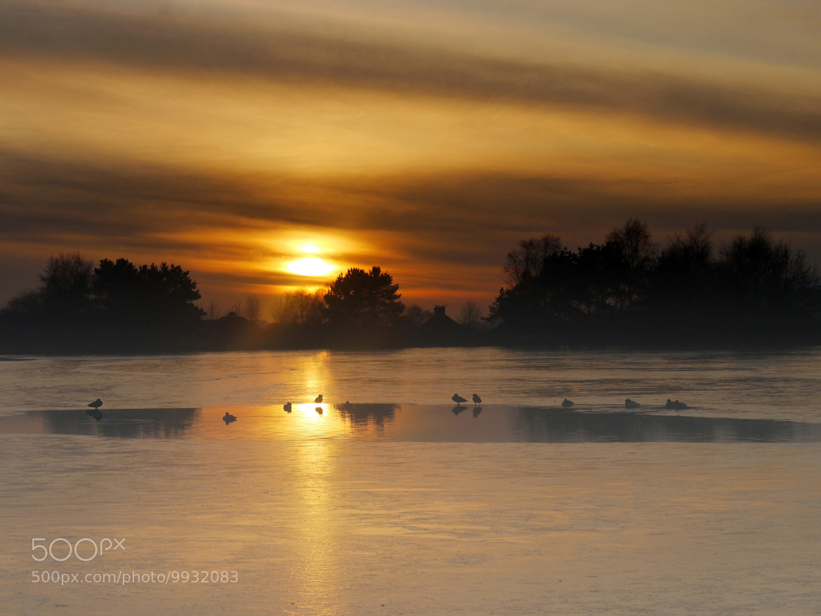 Photograph Drambuie on Ice by KENNY BARKER on 500px