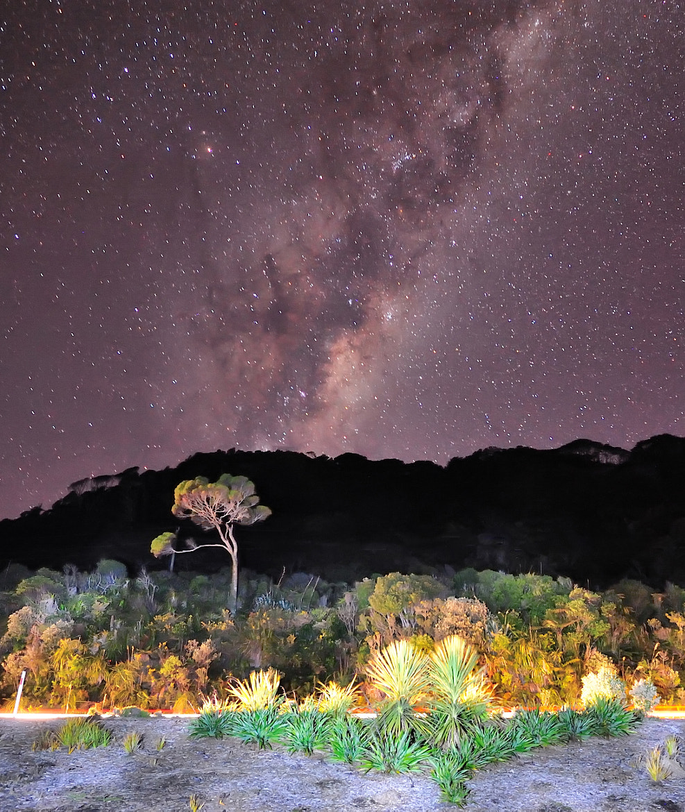 Photograph Milky Way across Coast Road by Nadly Aizat on 500px