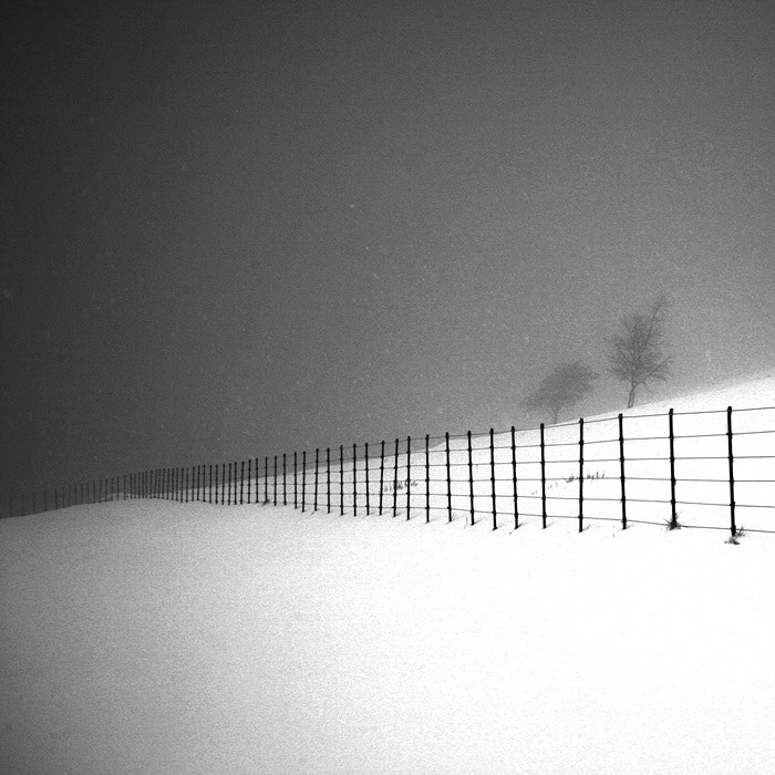 Photograph A Day in Snowy Lands #19 by Namdon Kim on 500px
