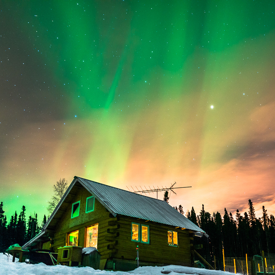 Photograph Aurora Mushers Cabin by Alexis Coram on 500px