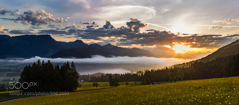 Photograph Foggy sunrise by Michael Mährlein on 500px