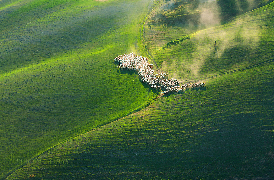 Photograph In a hurry by Marcin Sobas on 500px