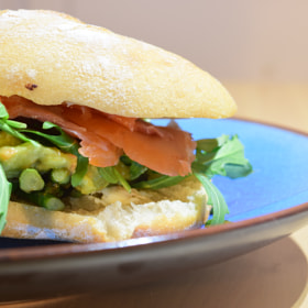 Salmon guacamole sandwich