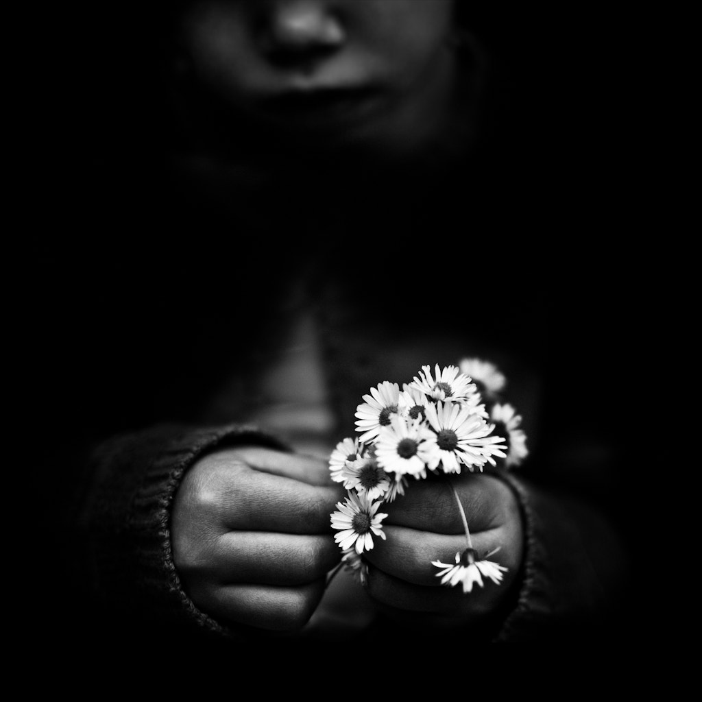 Photograph Flowers by Benoit COURTI on 500px