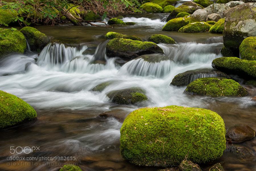 Photograph Appalachian Stream by Alex Filatov | alexfilatovphoto.com on 500px