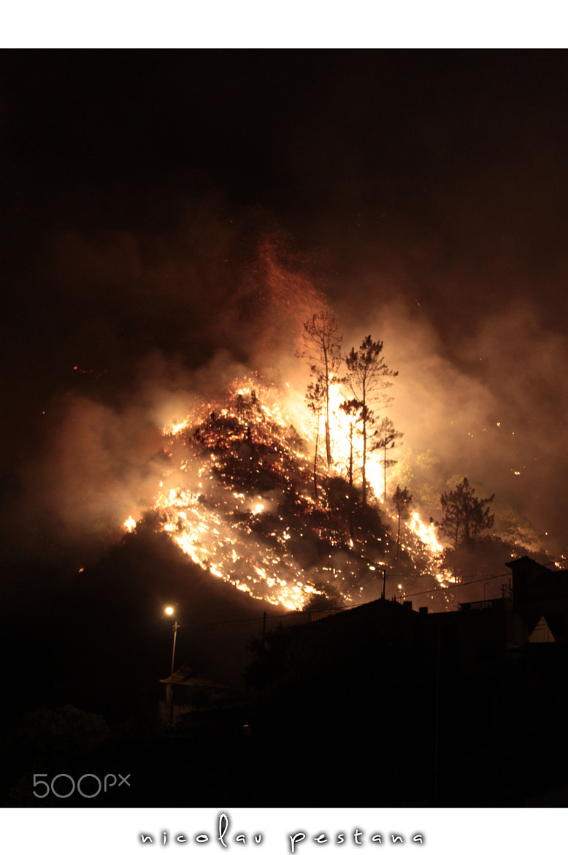 Photograph fire by nicolau pestana on 500px