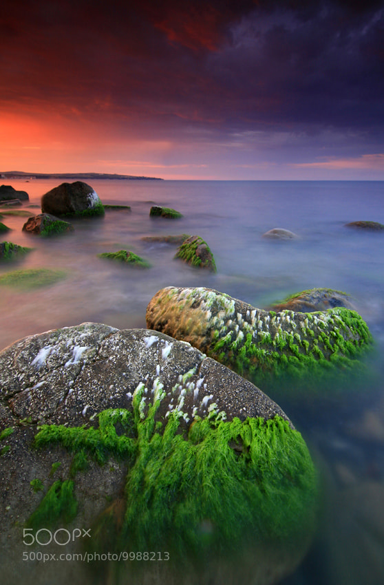 Photograph July Sunset by Pavel Pronin on 500px