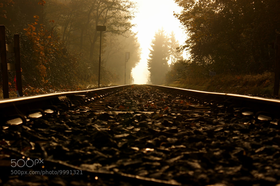 Photograph Morning Rail by Geert-Jan Kettelarij on 500px