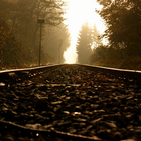 Morning Rail by Geert-Jan Kettelarij (Kettelarij)) on 500px.com