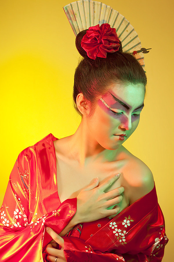 Photograph Geisha by Willy Brordus on 500px