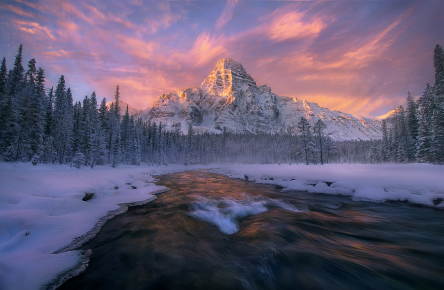 Embrace of Light by Marc  Adamus on 500px.com