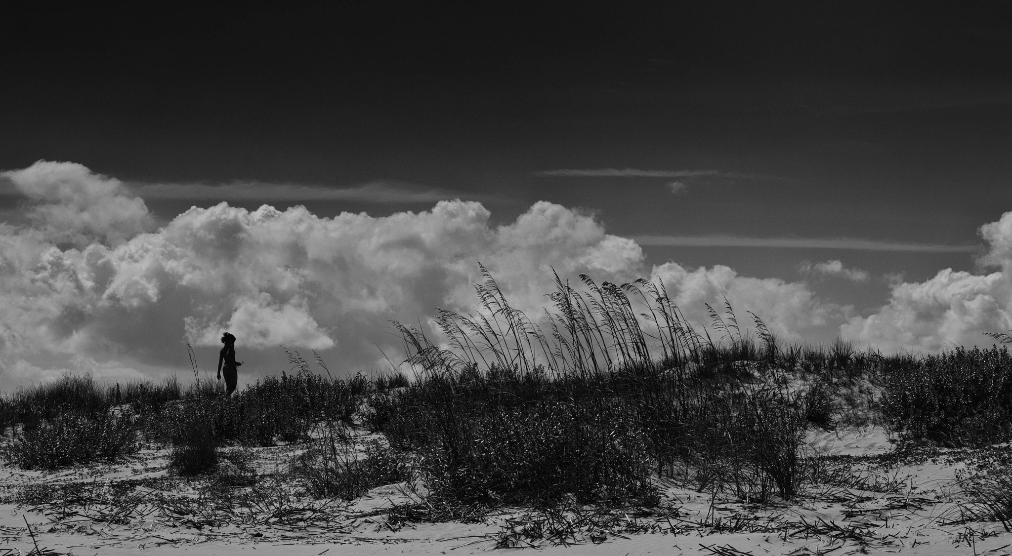 Photograph Sullivan's Island by Beth Blackwell Cullen on 500px