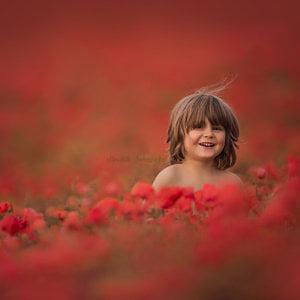 Claire Conybeare - Chinchilla Photography